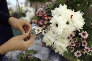 とってもかわいいお花のキャラクターブーケ - Puppy bouquets -
