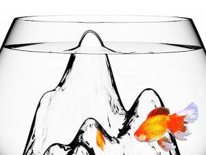 そびえ立つ山の上を泳ぐ金魚 - Fishscape Fishbowl -