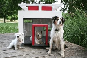 セレブ犬御用達デザイナーズマンション - Dog Mansion -