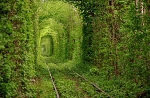 幻想的で美しい、恋のトンネル - tunnel of love -