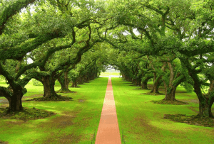 自然に魅了される世界の美しい景色いろいろ - Nature And Design -