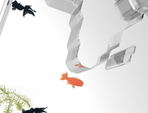 世界を大冒険!世界一周する金魚を楽しむ金魚鉢 - world trip -