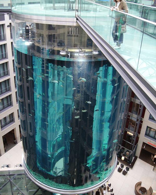 AquaDom