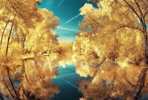 とてもキレイ!反射が美しい写真いろいろ - Amazing Reflection Photography -