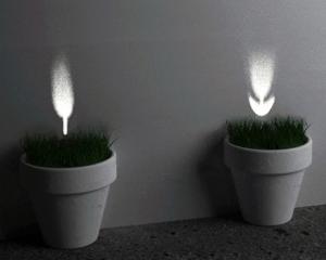 光の花が咲くポット - Plants of Light -