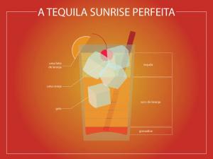 一目で分かるカクテルの作り方インフォグラフィックス - o drink perfeito  -