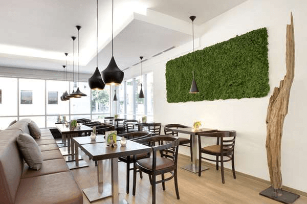 Wall-Mounted Moss Panel