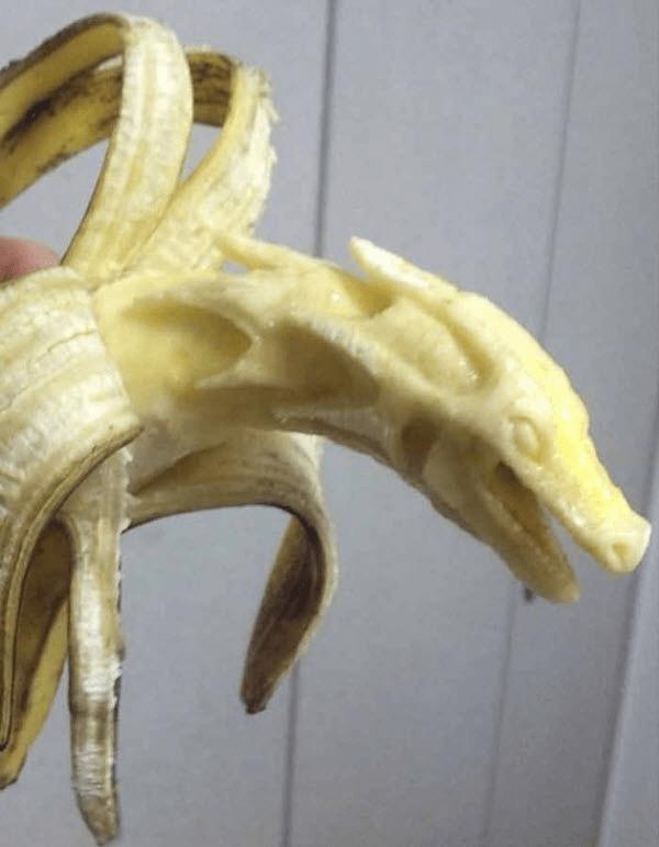 Creative Fruit Animal Art