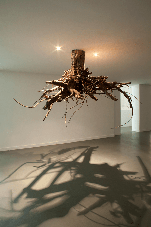 Tree Root Chandeliers