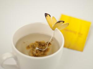 見た目にも癒される!チョウが舞い降りる紅茶 - Butterfly Tea -