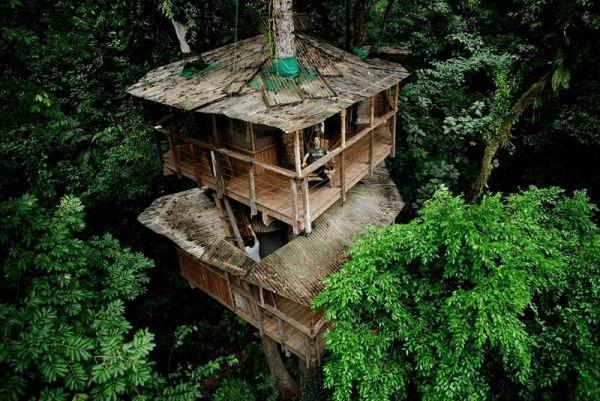 奇跡の楽園がここに!ジャングル気分を満喫できるコスタリカのツリーハウス - Finca Bellavista