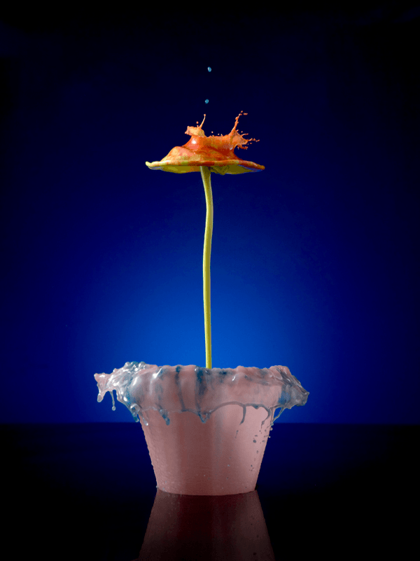 High Speed Liquid Flowers
