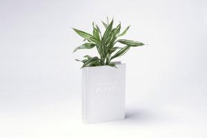 並べて置いてみたい!植物の一生を物語る本の形をした植木鉢 - Book Vase