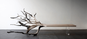 どうなってるの?! 倒木という名の自然の木の美しさそのままのベンチ - FallenTree