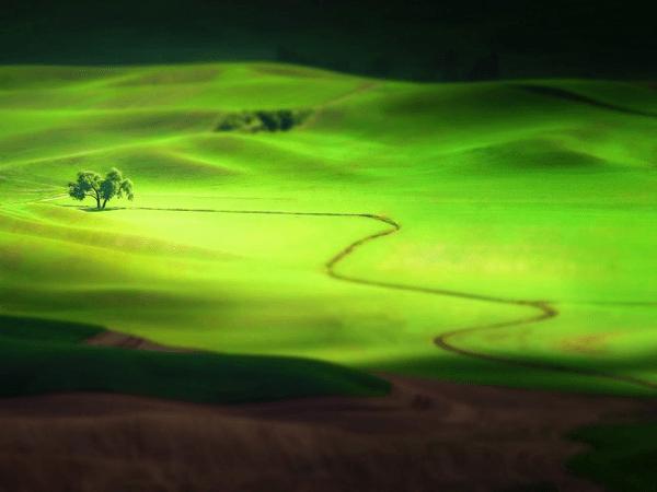 25 Incredible Tilt Shift Photography