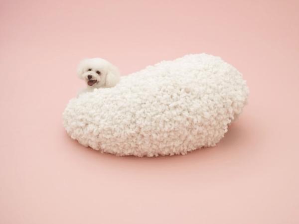 犬もオシャレになりそう!巨匠が手がけた犬のための建築 - Architecture for Dogs