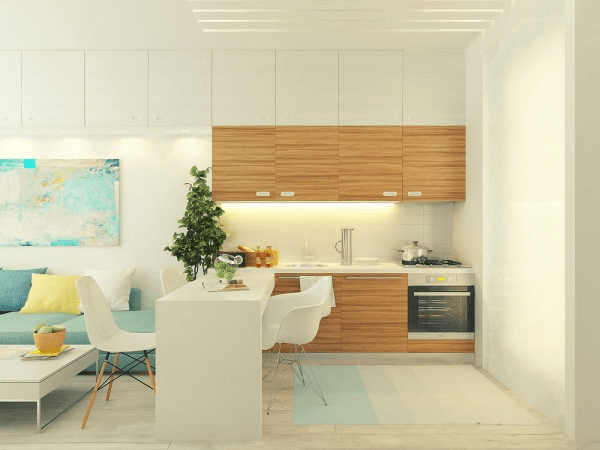 Small 29 square meter Apartment
