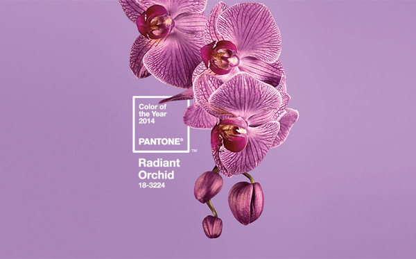 PANTONEが決める2014年のテーマカラーはラディアント・オーキッド - Pantone Color of the Year 2014