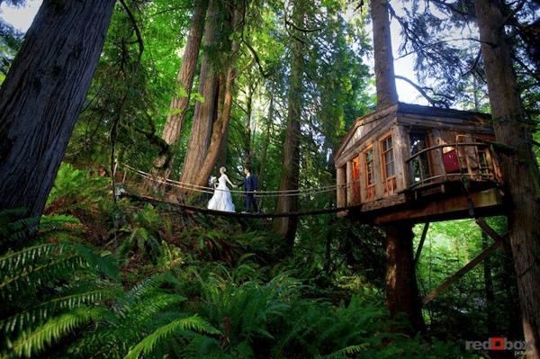 自然を満喫! 現実から解き放たれる大人のツリーハウス - TreeHouse Point