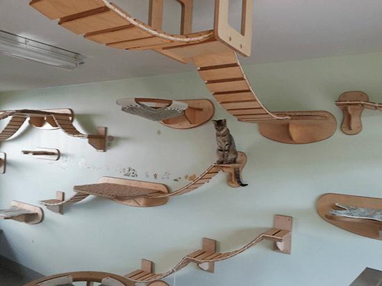 自分が猫になりたくなる! 究極の猫のためのインテリア - Goldtatze