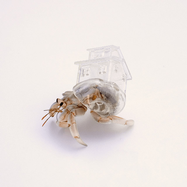 3D Printed Hermit Crab Shell