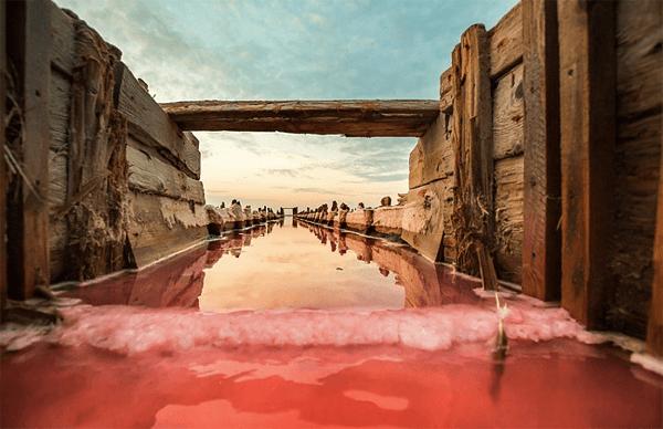 信じられない絶景。真っ赤に染まるウクライナの美しすぎる腐海 - Rotten Sea