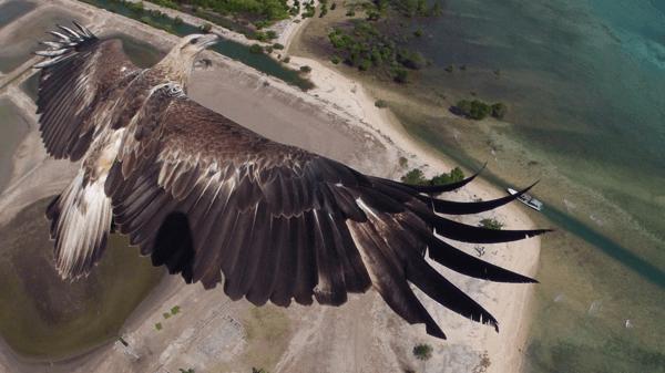 空から眺める世界は本当に素晴らしい。鳥になった気分で楽しむ写真コンテスト優勝作品がすごい - Dronestagram