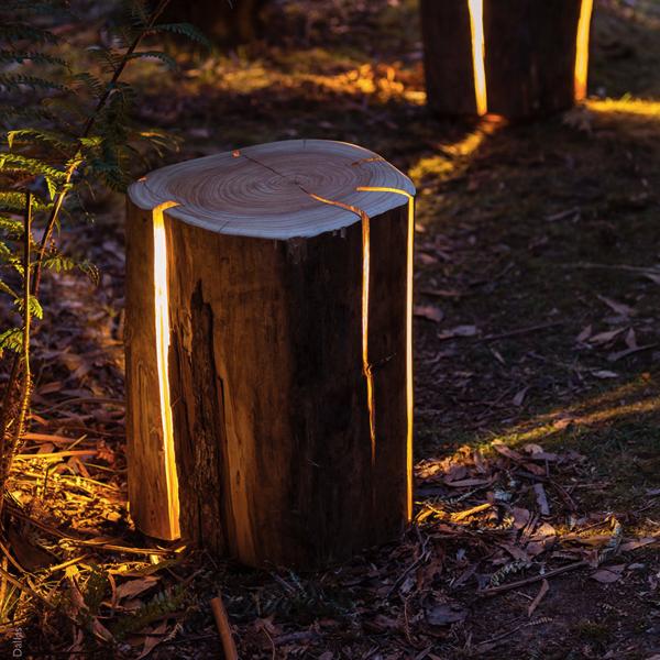 宝物が隠されていそう!幻想的な光を放つ丸太のランプ