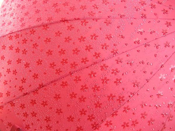 雨がちょっと楽しくなりそう! 濡れると柄が浮き出るカワイイ傘