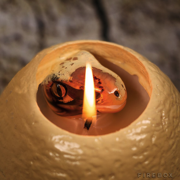 Dinosaur Egg Candle Hatches