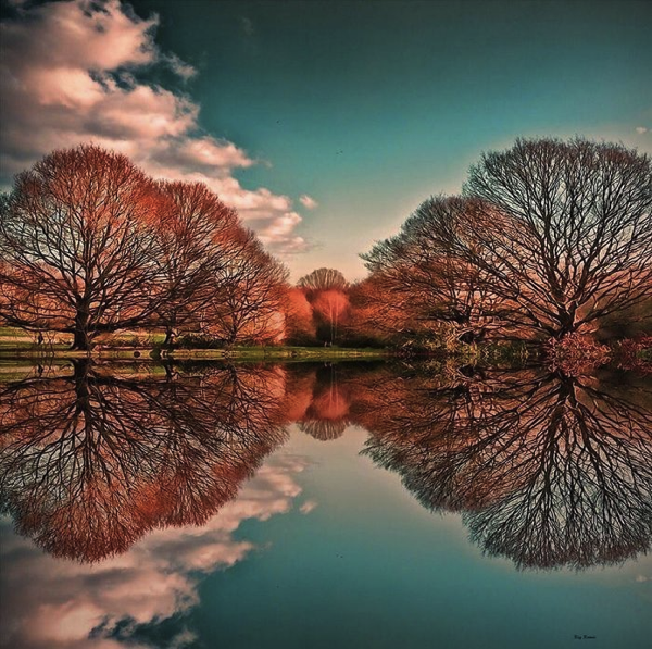 Perfect Reflections