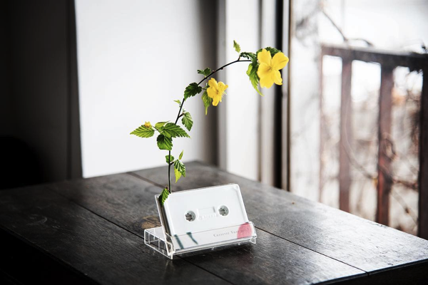 cassette vase