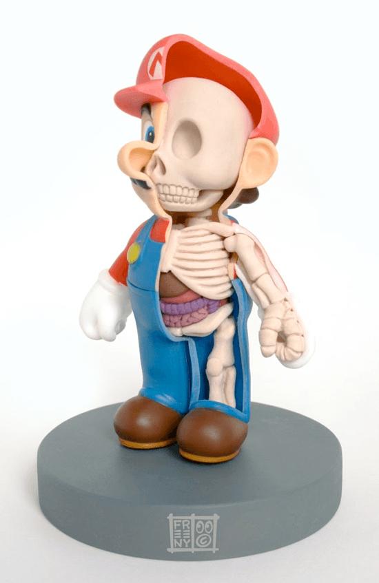Mario Anatomy