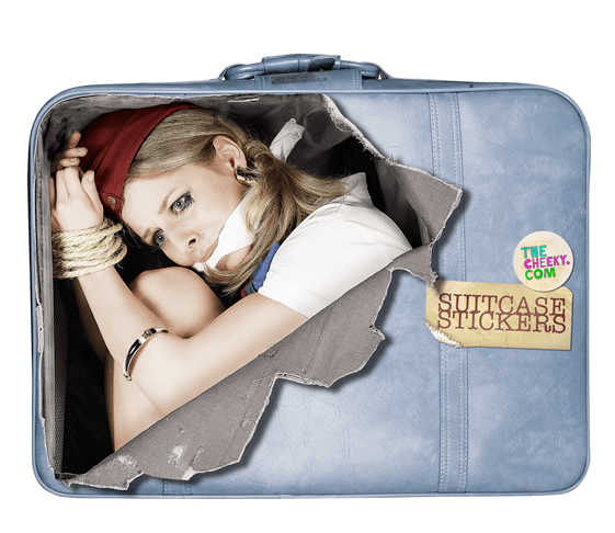Suitcase Stickers by The Cheeky