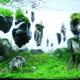 岩が浮いている?!水草レイアウト会の世界の頂点が別世界すぎる - The International Aquatic Plants Layout Contest 2012 -