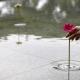 波紋に癒される。水面に咲かせるステキな発想の花瓶 - Floating Vase RIPPLE