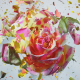 瞬間の芸術!花が破裂する瞬間を切り取った儚くも美しい写真